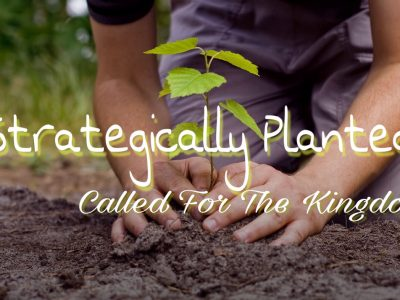 Strategically Planted - Called for the Kingdom